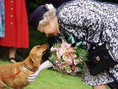 QUEEN ELIZABETH II ..What a nice picture...she loves animals