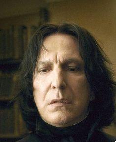 Harry Potter Severus Snape, Alan Rickman Severus Snape, Cat, Black, Black People, Cat Breeds, Cats, Kitty