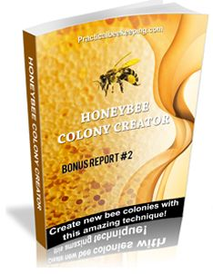 Practical Beekeeping book for Beginners gives you beekeeping tips! A bee book with step-by-step instructions to start beekeeping right now!