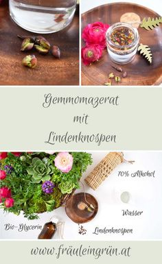 Herbalism, Health Fitness, Table Decorations, India, Fried Cabbage Recipes, Alternative Medicine, Natural Remedies, Natural Medicine, Medicinal Plants