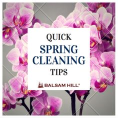 Quick Spring Cleanin