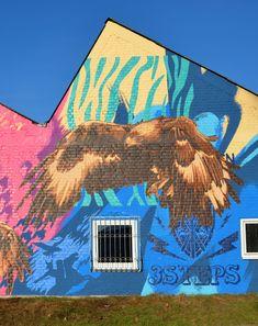 Birds of Prey Blue Yellow, Pink Purple, Birds Of Prey, Mural Art, Akira, Color Patterns, Graffiti, Street Art