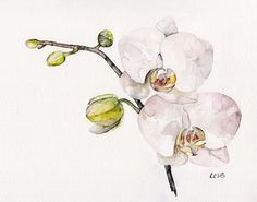 "Orchid Painting - Print from Original Watercolor Painting, ""Orchid"", Home Decor"