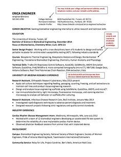 sample resume biomedical engineering inquiry essay to