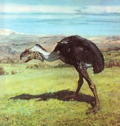 Phorusrhacos by Burian, from Love in the Time of Chasmosaurs: Vintage Dinosaur Art