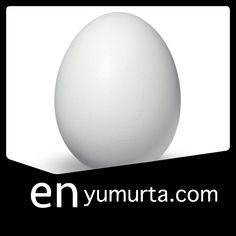 en yumurta siparis
