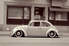 Volkswagen New Beetle, Volkswagen Golf, Cool Bugs, Beetle Convertible, Vw Cars, Vw Beetles, Custom Cars, Classic Cars, Butterfly Dragon
