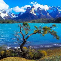 Torres del Paine National Park is just one of the places you could visit on your tailor-made trip to Chile. Let Audley help you to create your perfect itinerary Audley Travel, Torres Del Paine National Park, Beautiful Waterfalls, Beautiful Places In The World, Honeymoon Destinations, Argentine, South America, Central America, Travel Photos