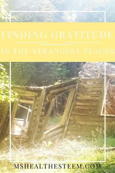 You can find gratitude in the strangest of places. I've even come to be grateful for the path that Graves Disease has led me on. Here's how I find that grateful place. Lead Me On, Graves Disease, Strange Places, Im Grateful, Wonder Quotes, Gratitude, Ms, Inspirational Quotes, Canning