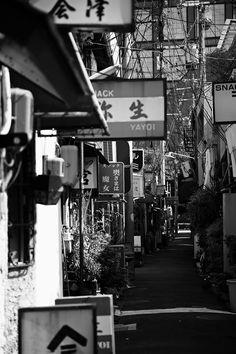 Somewhere in beautiful Japan