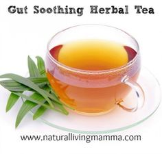 How to Make a Gut Soothing Herbal Tea Blend ~ Help for Celiac Disease & Other Stomach Problems