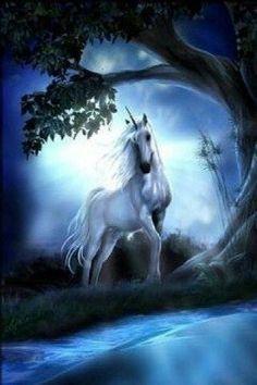 Image unicorn in images album Unicorn And Fairies, Unicorn Fantasy, Unicorns And Mermaids, Unicorn Horse, 3d Fantasy, Unicorn Art, Unicornios Wallpaper, Horse Wallpaper, Nature Wallpaper