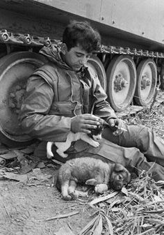 Vietnam War Photo member of A Troop Cav Infantry whit dogs 537