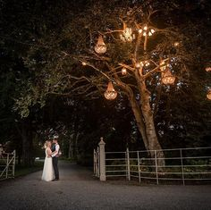The famous tree and chandeliers at by info: www. Tree Wedding, Wedding Day, Top Wedding Photographers, Chandeliers, Wedding Photos, Wedding Inspiration, Wedding Photography, In This Moment, Beautiful