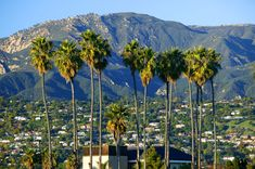 Santa Barbara, California-love visiting here! So need a trip to Cali! Santa Monica, Visit Santa Barbara, San Diego, San Francisco, Pacific Coast Highway, Big Sur, Newport Beach, Orange County, The Places Youll Go