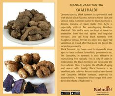 Rudralife provides Genuine Rudraksha which have been certified by an ISO 2015 accredited lab. 1 Mukhi to 21 Mukhi Collector Grade Rudraksha available here Vedas India, Hindu Vedas, Hindu Deities, Vedic Mantras, Hindu Mantras, Hinduism History, Sanskrit Mantra, Hindu Rituals, Hindu Culture
