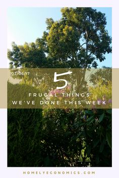 Here are five frugal things my family and I did over the last seven days. Being thrifty has become a habit - here's how we do it!