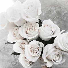 There is something so luxurious about white roses #adorncosmetics #roses #luxury