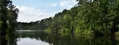 Woodsy Hollow Campground lake living/trinity river.