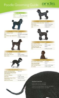Repinned Andis Blades Hair Length Chart Become A Pet