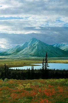 Sheenjk River Valley, Artic National Wildlife Refuge, Alaska.