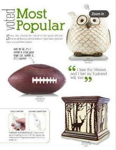 How cute are these warmers? NO flame cool wax and football, owl or deers? Love them! www.finestcandles.ca