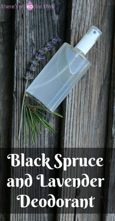 Black Spruce and Lavender Deodorant - This black spruce and lavender deodorant is resinous and coniferous in aroma and is uplifting yet grounding in nature. Perfect for wintertime odor control!