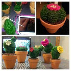 Colección cactus amigurumi