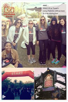 Amy's Instagram Diary: WalkMS in Tampa, at Lowry Park Zoo & the starting line