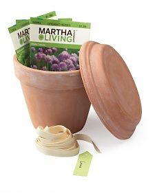 Fill a clay pot with seed packets, use the saucer as a lid and tie with ribbon.