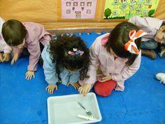 DENSIDAD AGUA: Mostramos los objetos que vamos a echar en el agua: una llave, una piedra, una cuchara de madera y otra de metal. Preguntamos qué puede pasar en cada caso. Los niños/as ponen los objetos en el agua y verbalizamos lo que ocurre.