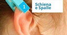 La parte più alta dell'orecchio corrisponde alla zona di spalle e schiena, spesso soggetta a vari problemi a causa delle posizioni che assumiamo o delle tensioni che subiamo quotidianamente.