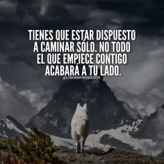 Motivational Phrases, Inspirational Quotes, Suits Quotes, Quotes En Espanol, Wolf Quotes, Wolf Pictures, Smart Quotes, Millionaire Quotes, Truth Of Life