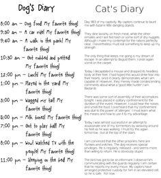 dog diary/cat diary!