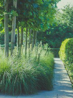 Urban Garden Design, Architecture Office, Garden Paths, Garden Inspiration, Vegetable Garden, New Homes, Home And Garden, Country Roads, Plants