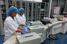 Viajarán financiadas por el programa de innovación SENNOVA y acompañadas de un facilitador de la Tecnoacademia del Sena de Risaralda