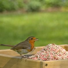Favourites blend bird food 12.75 kg
