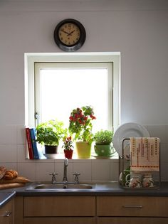 I like plants in kitchens.