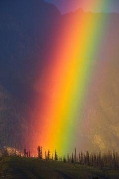 Rainbow www.ulissedeluxe.com