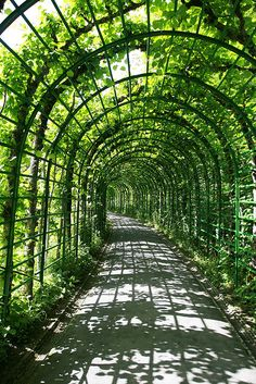 Linderhof Palace Gardens, Bavaria, Germany Homes & Gardens CLLC Oh The Places You'll Go, Places To Visit, Linderhof Palace, Pergola, Gazebo, Neuschwanstein, Palace Garden, Bavaria Germany, Historical Architecture
