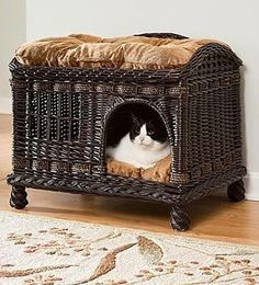 Comfort for Your Pet With Your Home's Decor Such a cute cat bed that could also work as a bench. Beware of cat attacks when you sit down!Such a cute cat bed that could also work as a bench. Beware of cat attacks when you sit down! Pet Beds, Dog Bed, Cool Cat Beds, Pet Furniture, Wicker Furniture, Cat Accessories, Home And Deco, Cool Pets, Dog Houses