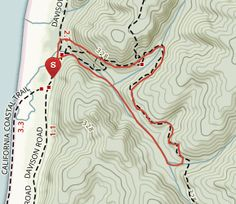 Fern Canyon Loop - California | AllTrails.com