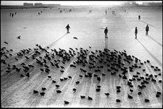 //Leonard Freed// AmsterdamWinter scene 1964.... IFTTT Tumblr