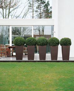 """<b class=""""hellgruen"""">Das innovative Pflanzsystem.<br /></b>Für alle, die schöne Pflanzen ohne viel Aufwand genießen möchten, hat Lechuza Pflanzgefäße entwickelt, deren Design alleine sie schon zu wahren Schmuckstücken in Wohnung, Haus und Garten macht. Dabei bieten sie funktionell so viele Vorzüge, dass sie konventionellen Pflanzgefäßen weit überlegen sind. <b class=""""hellgruen"""">Ein Pflanzsystem - durchdacht bis ins Det..."""