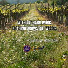 Without hard work nothing grows but weeds. -Gordon B. Hinckley  http://ayeakoda.com  #business #workhard #smm #leadership #mlmleads #instaleads #instagramers #instagramfitness #smtip #fitnessnation #yoga #mind #bodybuilding #uplift #fitbody #fitgirls #fitgirlsbootamp #liftheavy #fit #workout #transformation