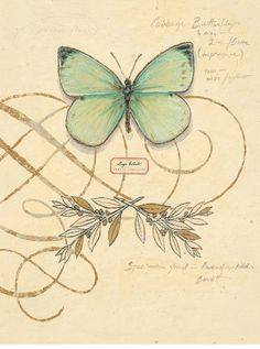 art journal inspiration - Scripted Papillon ~ Chad Barrett  #print  #butterfly  this would make a lovely tag or card with 3-d butterfly attached