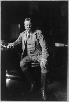 Theodore Roosevelt in his library at Oyster Bay.