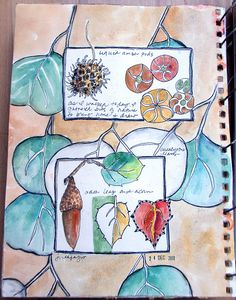 art journal pages:   - Sketchbook: from my walk by jane lafazio, via Flickr
