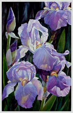 Purple Iris Painting