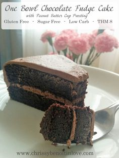 One Bowl Chocolate Fudge Cake (THM S)